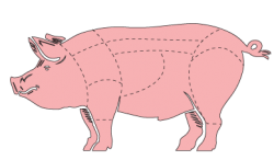 Pork Pixel Creative - Full Service Marketing Agency in San Antonio TX